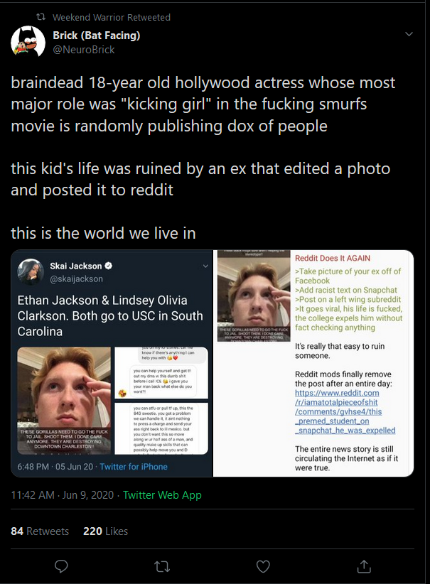 fake racist .png