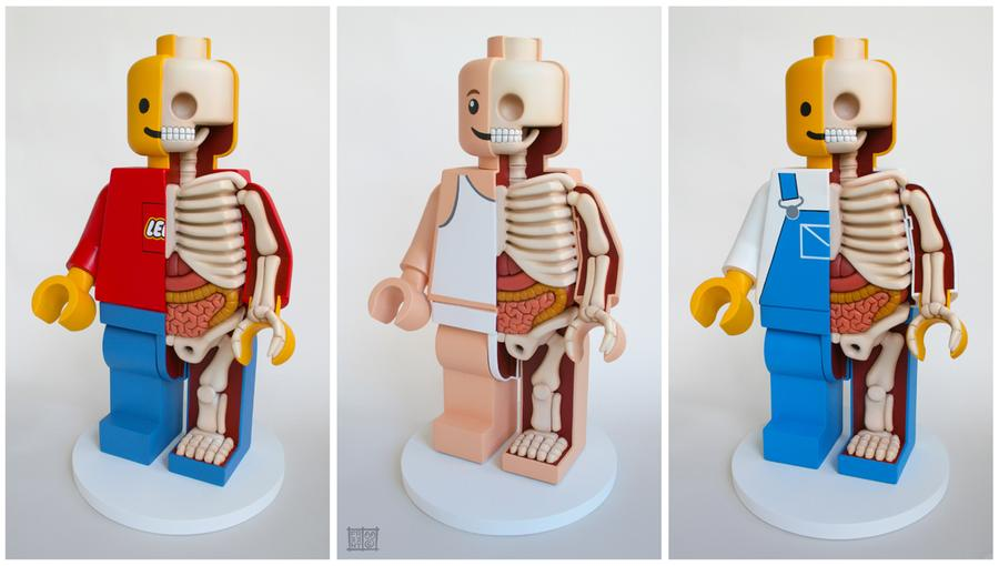 large_anatomical_lego_men_by_freeny_d53zea4-fullview.jpg