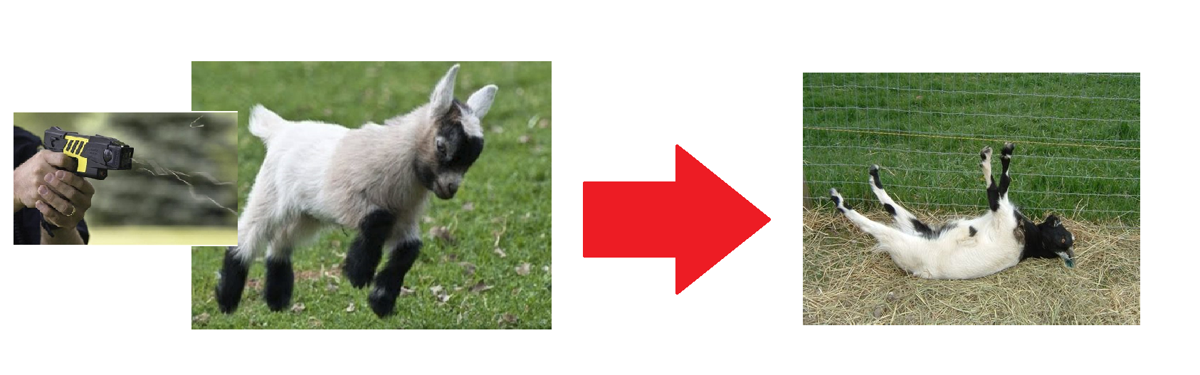 Remove Goat.png